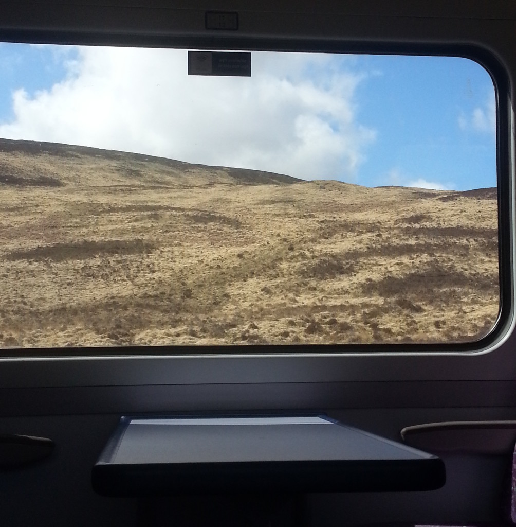View from the train on the way to Thurso