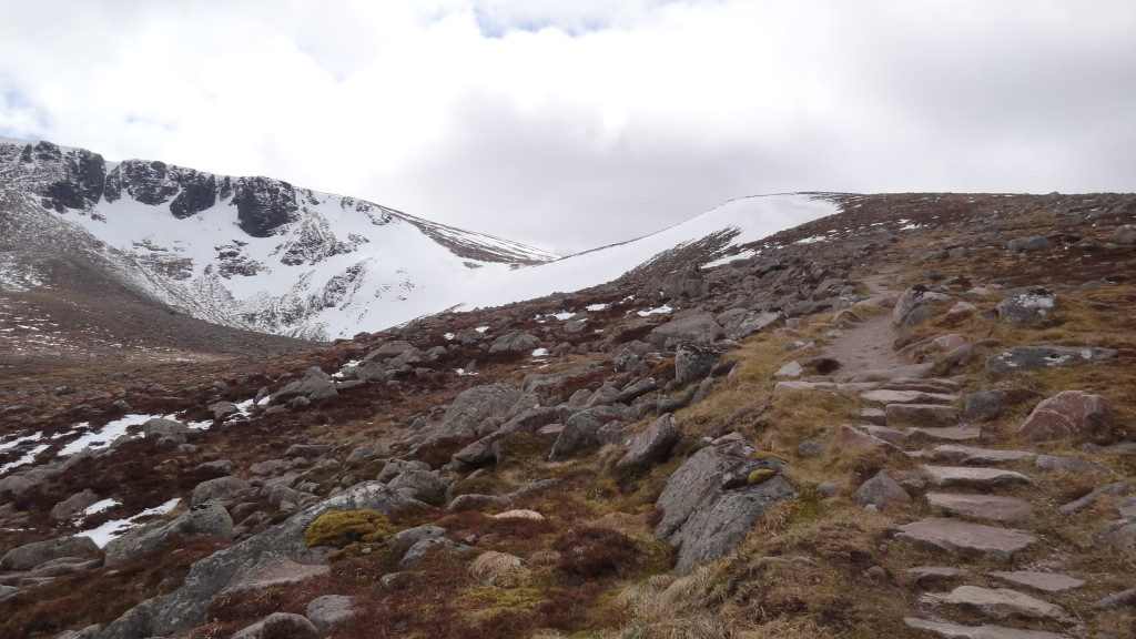 stony pathway and snowy mountain