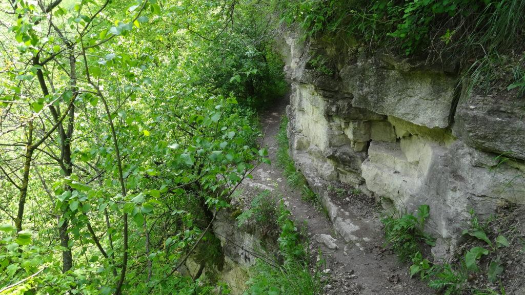 Narrow path leading to the waterfall, Saharna