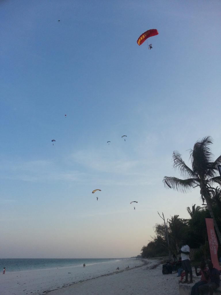A few skydivers