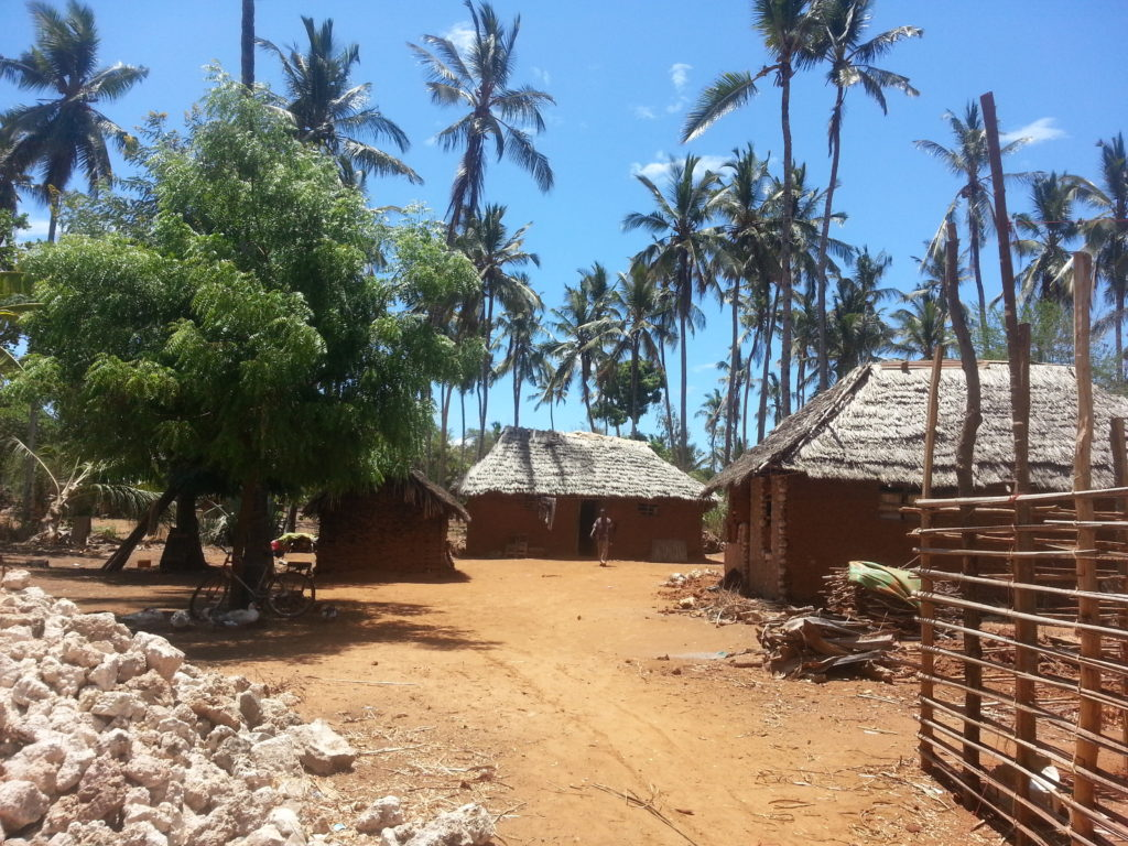 Kenyan village on the way to Kilifi