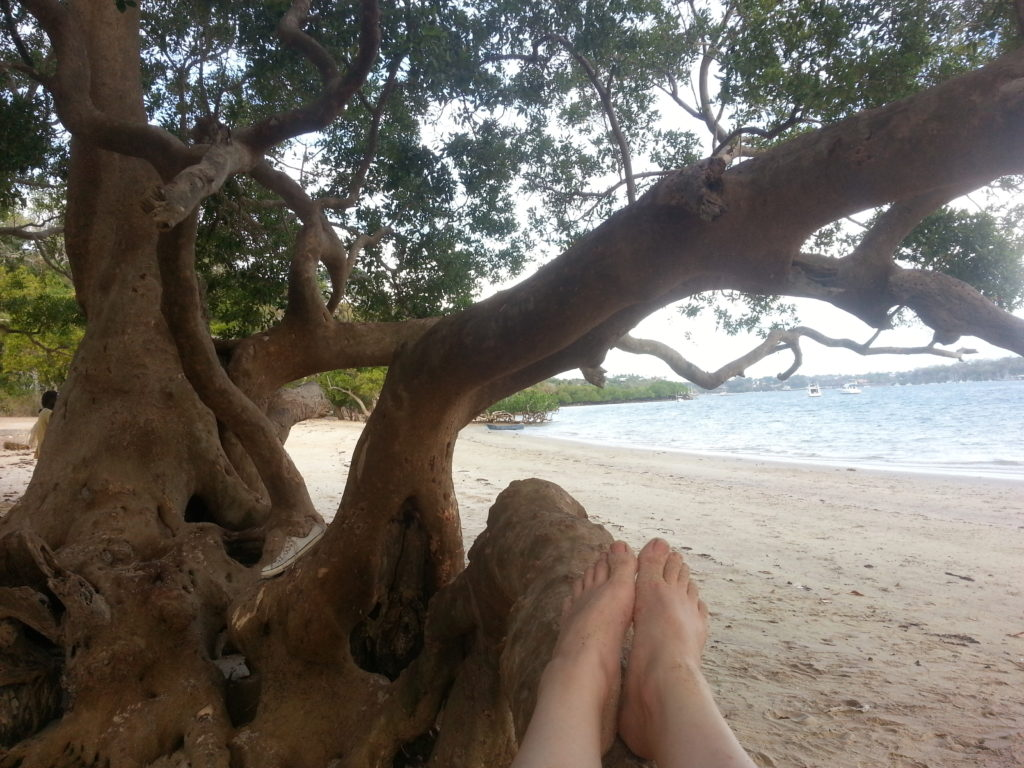 Relaxing in a tree on the beach next to the backpackers in Kilifi, Kenya